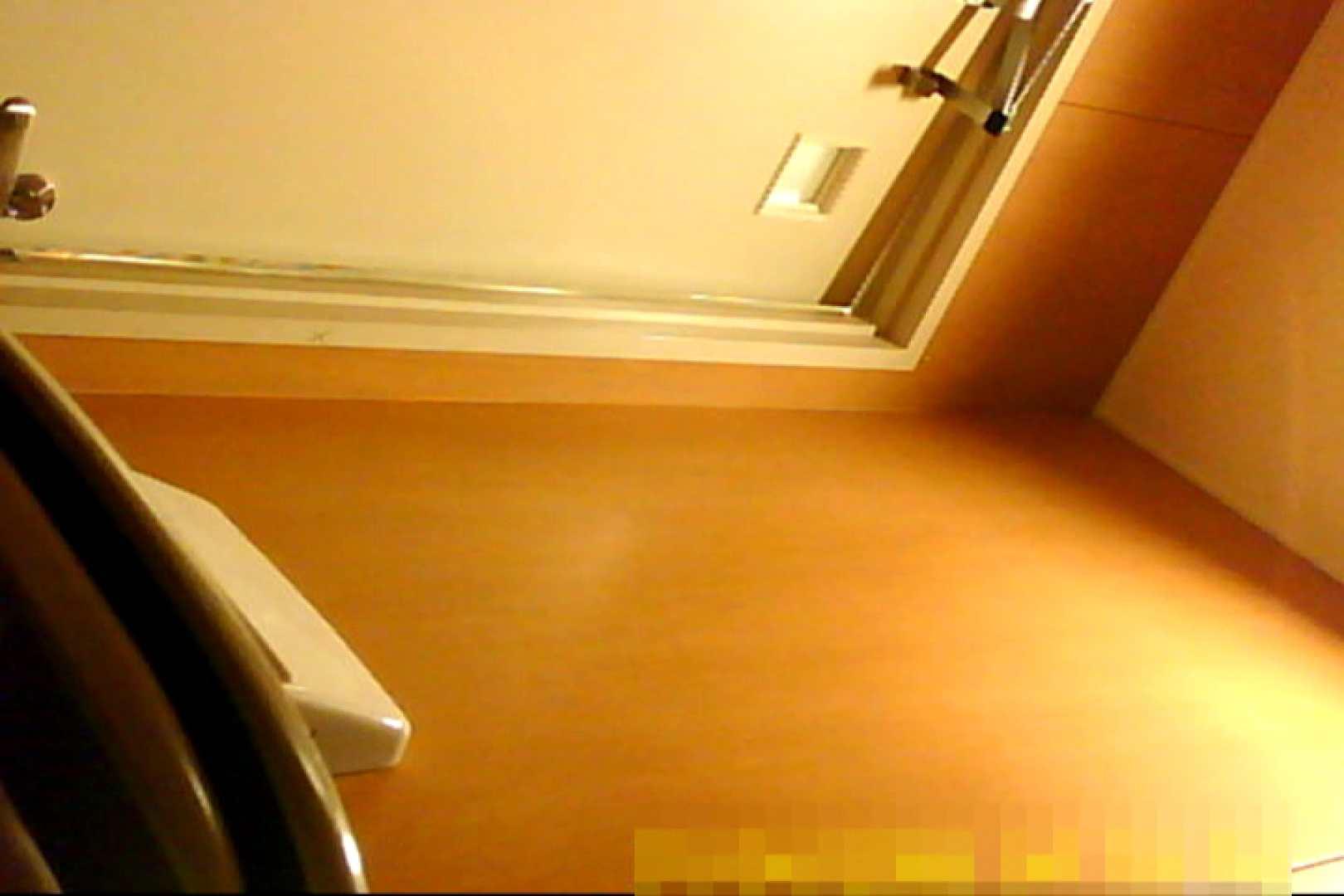 魅惑の化粧室~禁断のプライベート空間~32 お姉さん オマンコ動画キャプチャ 78枚 71